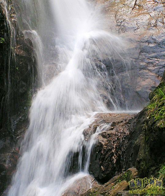 南昆山自然保护区的野生动物图片大全