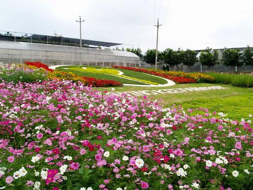 惠州永记生态园超详细介绍